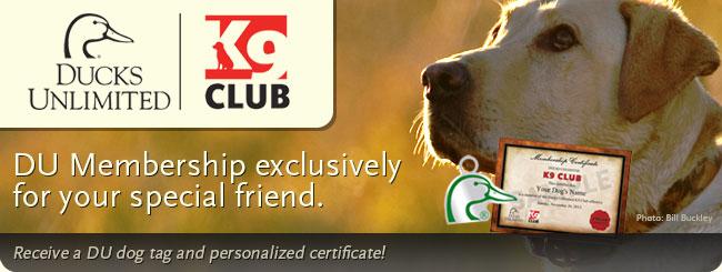 DU K9 Club